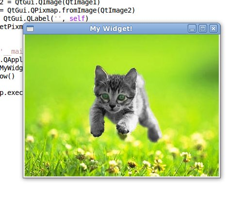 Kitten program screenshot
